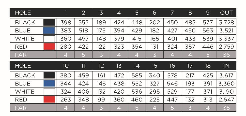 CCGGO170601_Web-Scorecard.jpg